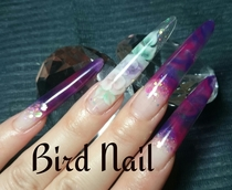 Bird・Nail